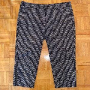 Black Loft Capri pants